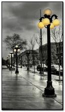 ánh sáng đường phố mưa