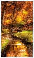 多雨的秋天