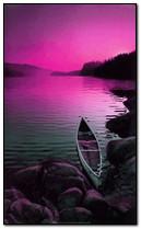 紫色的晚上