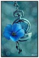 Horloge fleurie