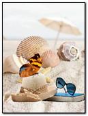 Sea Shell And Batterflay