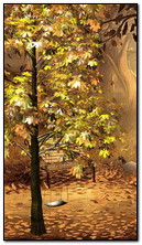 Autumnal Park 360x640