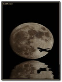 Avion Luna