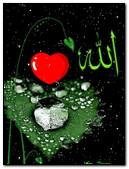 Islamic 29