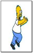 Homer Run