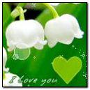 heart&flower