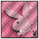 花花公子兔子