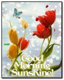 Buongiorno sole