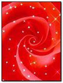 लाल गुलाब