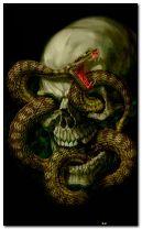 skull serpiente