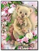 Teddy & Roses