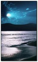 Nocna plaża