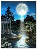 beautyful garden