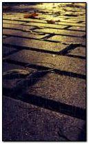 Yağmurlu sokak