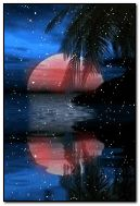 Noite do paraíso