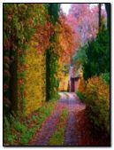 changing autumn