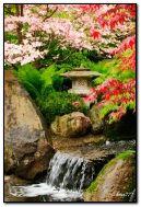 प्रकृति की सुंदरता