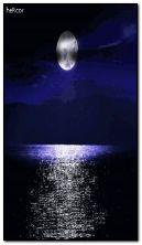luna c6