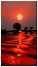 Soleil africain