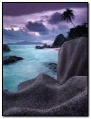 The sea-shore