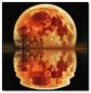 Moon Reflet