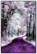 Purple winter dream