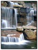 240x320 stream fall