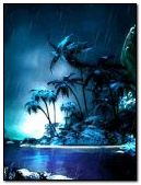 Dark tropical night