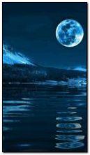 月明かりの夜