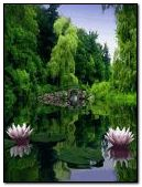Beautyful park