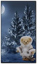 teddy in winter forest