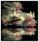 Piękny Most