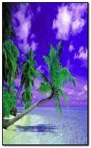 Beautyful beach