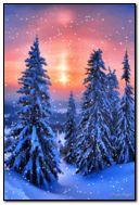 phong cảnh tuyết