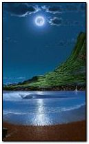 Nocna plaża 240x400