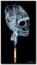 merokok membunuh