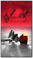 rose miss u
