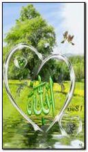 ALLAH CC