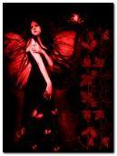 черные ангелы живут в красном