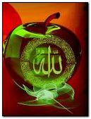 Allah Mohammad(PBUH)