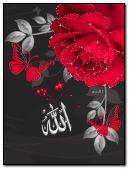 ALLAH C.C. islamic