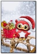 Little Christmas Owl