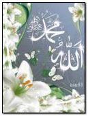 ALLAH C.C. MUHAMMED S.A.V.
