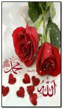 अलाहा सीसी मुहम्मद एसएवी