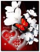ALLAH C.C.MUHAMMED S.A.W.