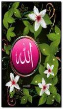 ALLAH C.C.