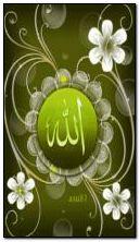 अल्लाह सीसी