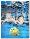 schwimmende Babys