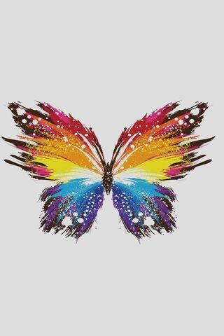 Kelebek Sanatı