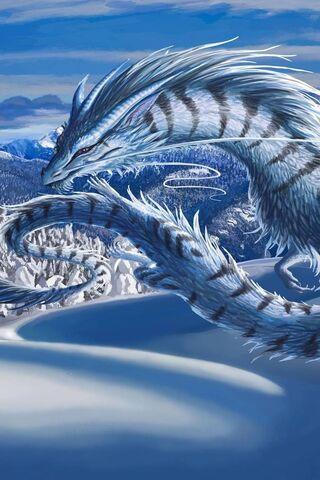 Winterdragon